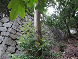 松山城登り石垣写真