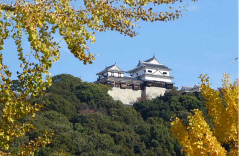 秋の松山城です