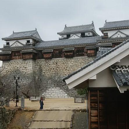 黒門登山道から松山城研修でした
