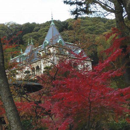 秋が深まってきました萬翠荘です